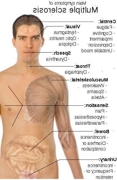 dissemineret sklerose symptomer